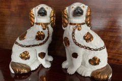 Staffonshire koirat
